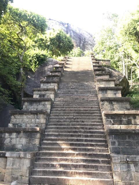 Sri Lanka Jasmine Tours & Drivers  スリランカジャスミンツアーズ撮影 ヤーパフワの階段その2