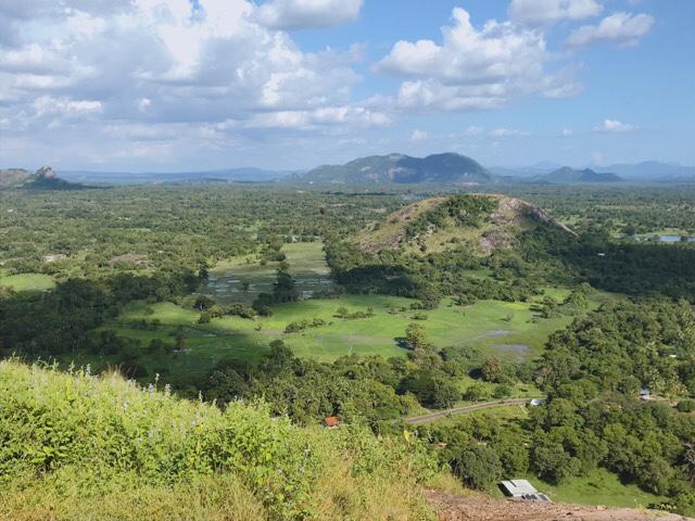 Sri Lanka Jasmine Tours & Drivers  スリランカジャスミンツアーズ撮影 ヤーパフワの頂上 絶景 水田