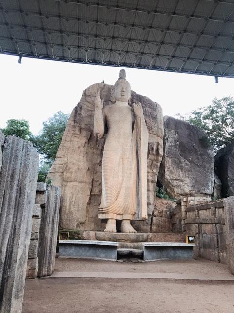 Sri Lanka Jasmine Tours & Drivers  スリランカジャスミンツアーズ撮影 アウカナブッダその1