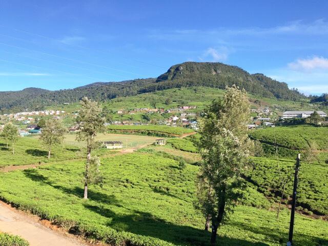 Sri Lanka Jasmine Tours & Drivers スリランカジャスミンツアーズ撮影。ヌワラエリヤの爽やかな朝