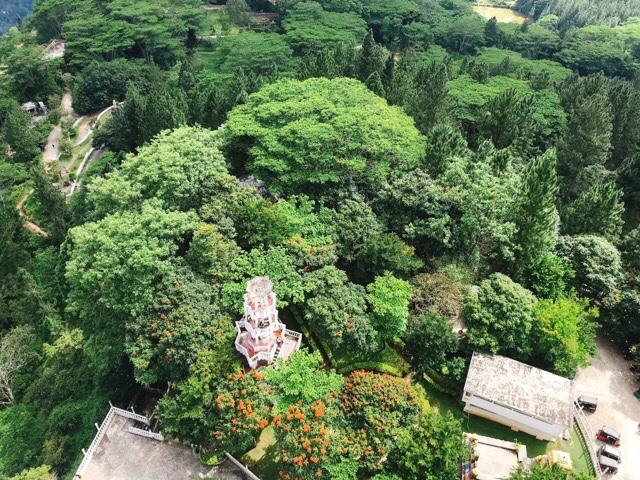 Sri Lanka Jasmine Tours & Driver スリランカジャスミンツアーズ撮影。 アンブルワワタワーに登る 景色が絶景
